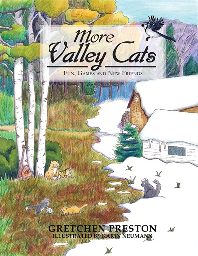 More Valley Cats: Fun, Games and New Friends